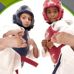 clases de Taekwondo infantil Gimnasio Nivel3 Bilbao